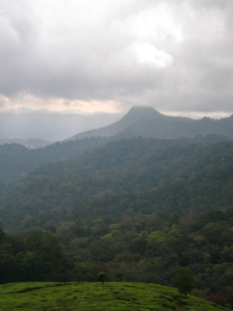 Kerela India Mountain