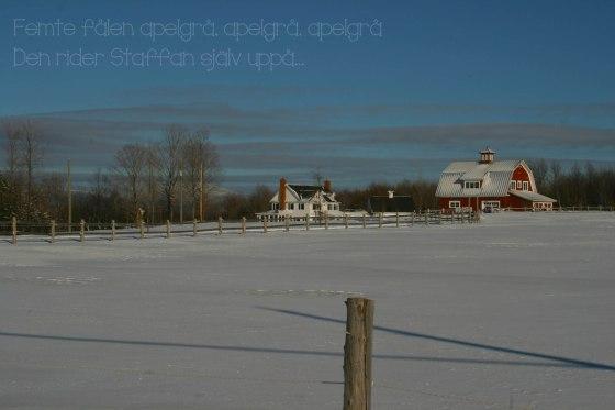 2012-12-17 Staffan
