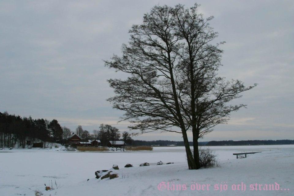 2012-12-18 gläns