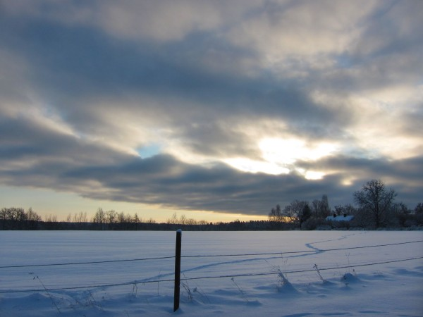 2012-12-18 winter 01