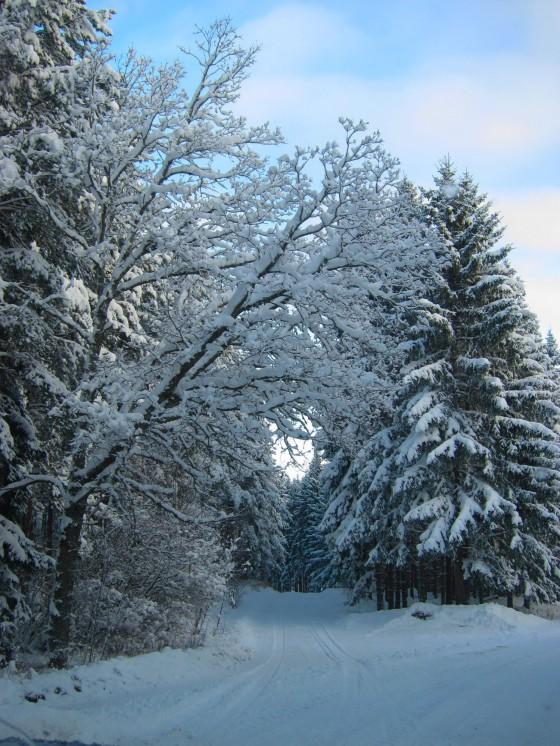 2012-12-18 winter 02
