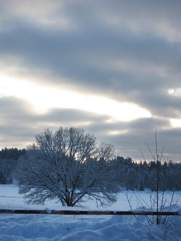 2012-12-18 winter 03