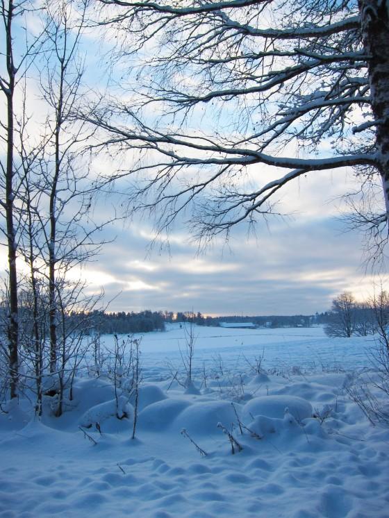 2012-12-18 winter 04