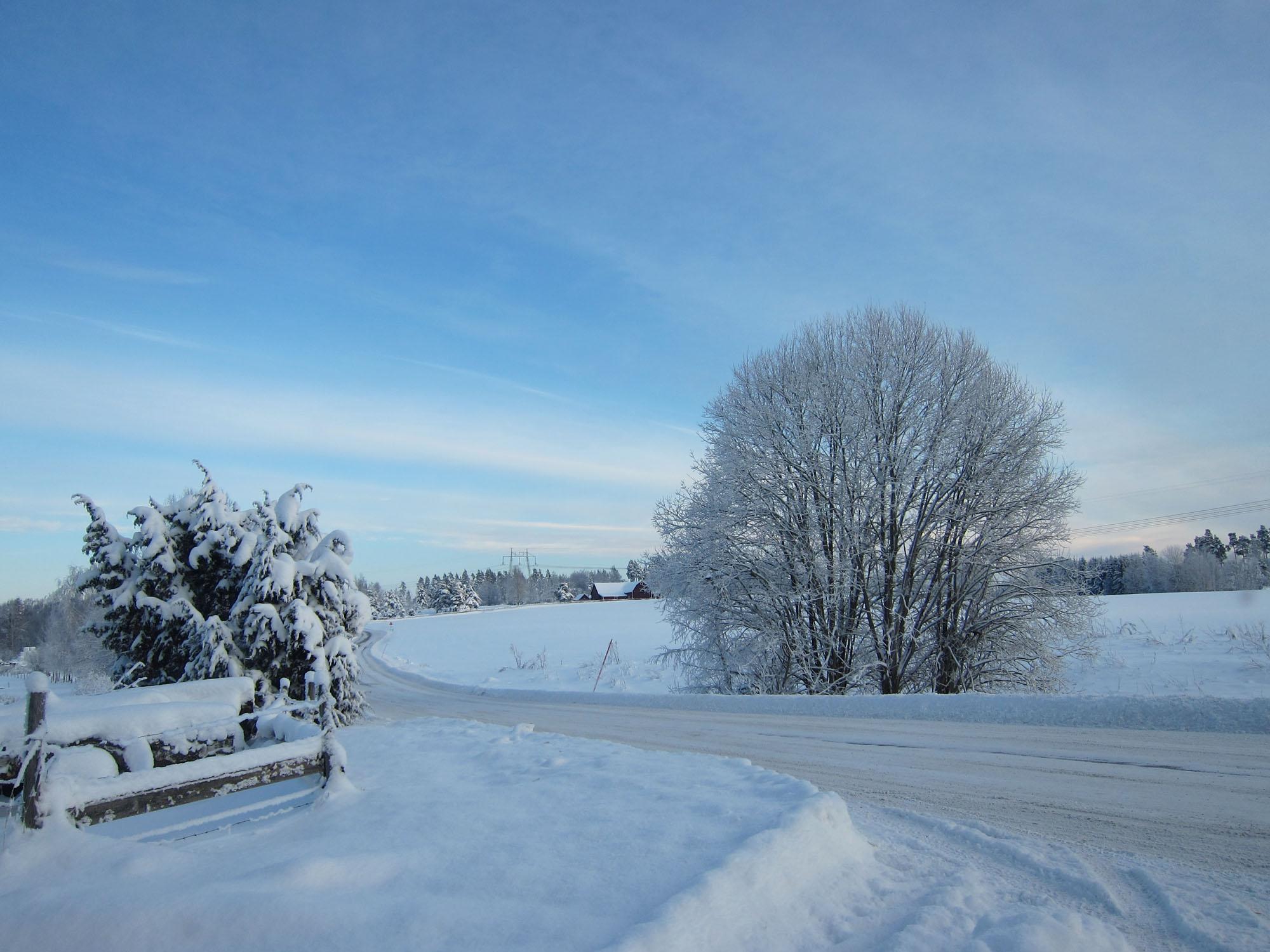 2012-12-18 winter 07