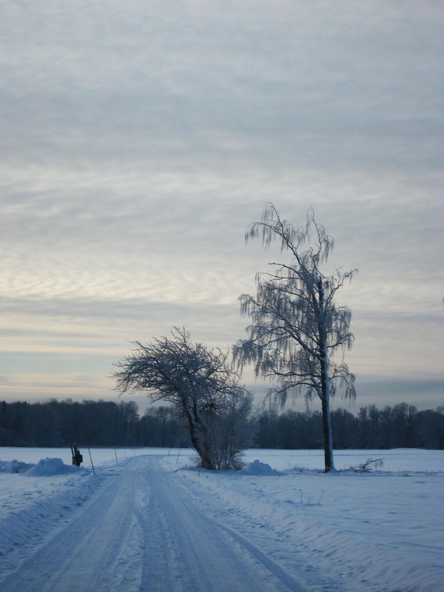 2012-12-18 winter 10