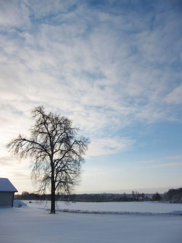 2012-12-19 Östgötaslätten 02