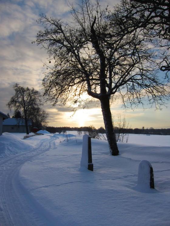 2012-12-19 Östgötaslätten 03