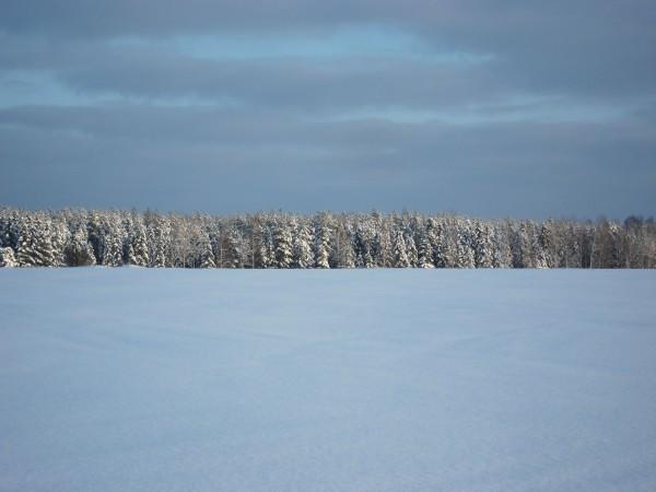 2012-12-19 Östgötaslätten 05