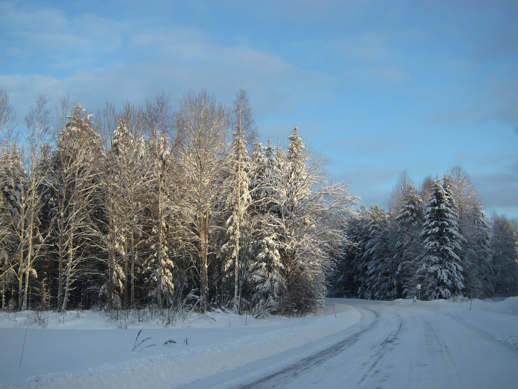 2012-12-19 Östgötaslätten 08