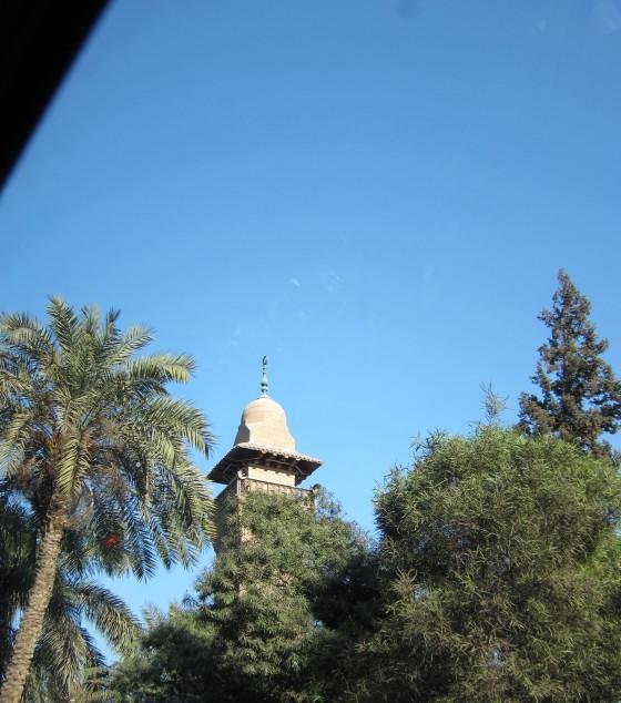 2013-04-02 Egypt day 3 05