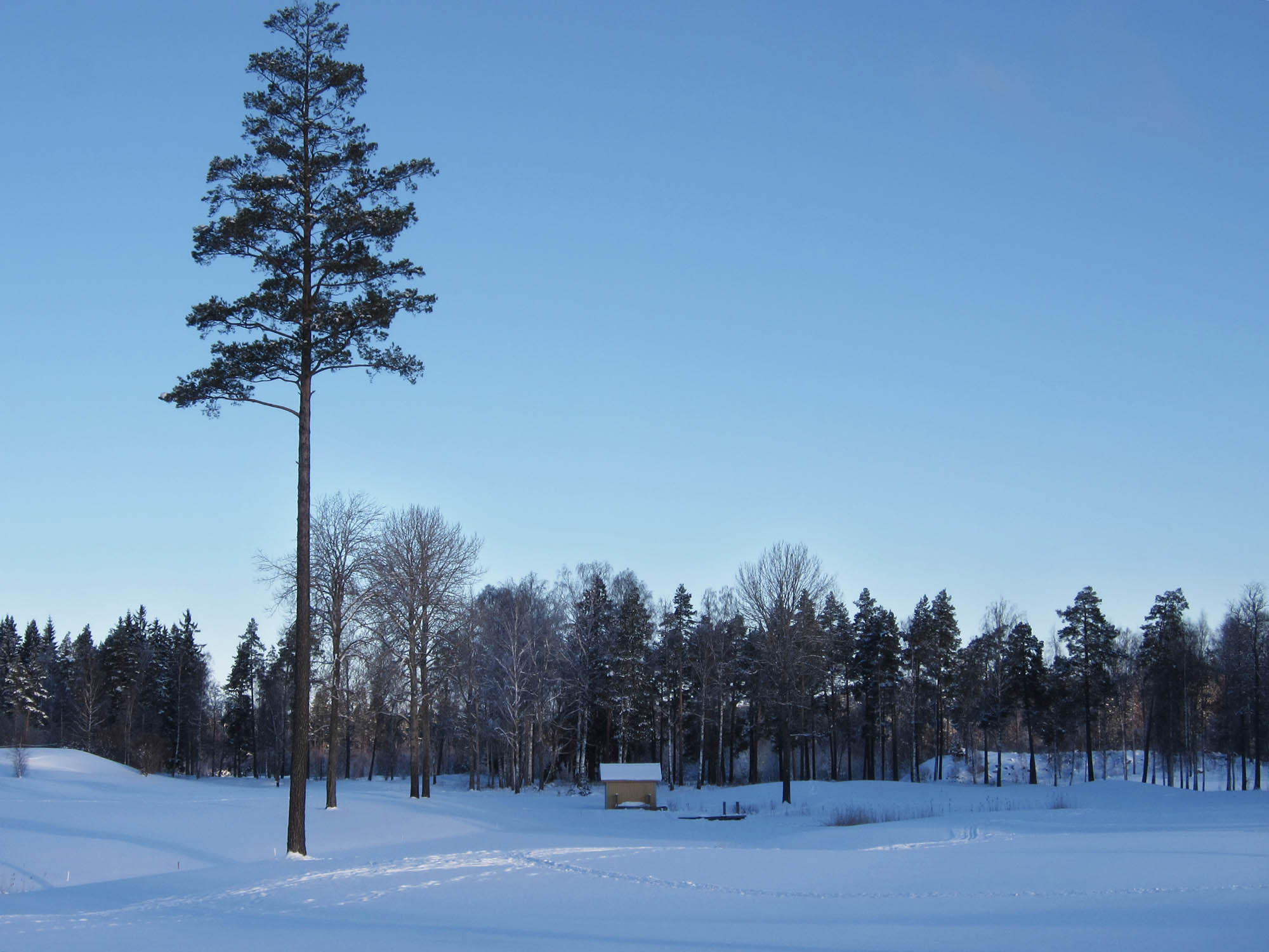 2013-02-08 promenad 01