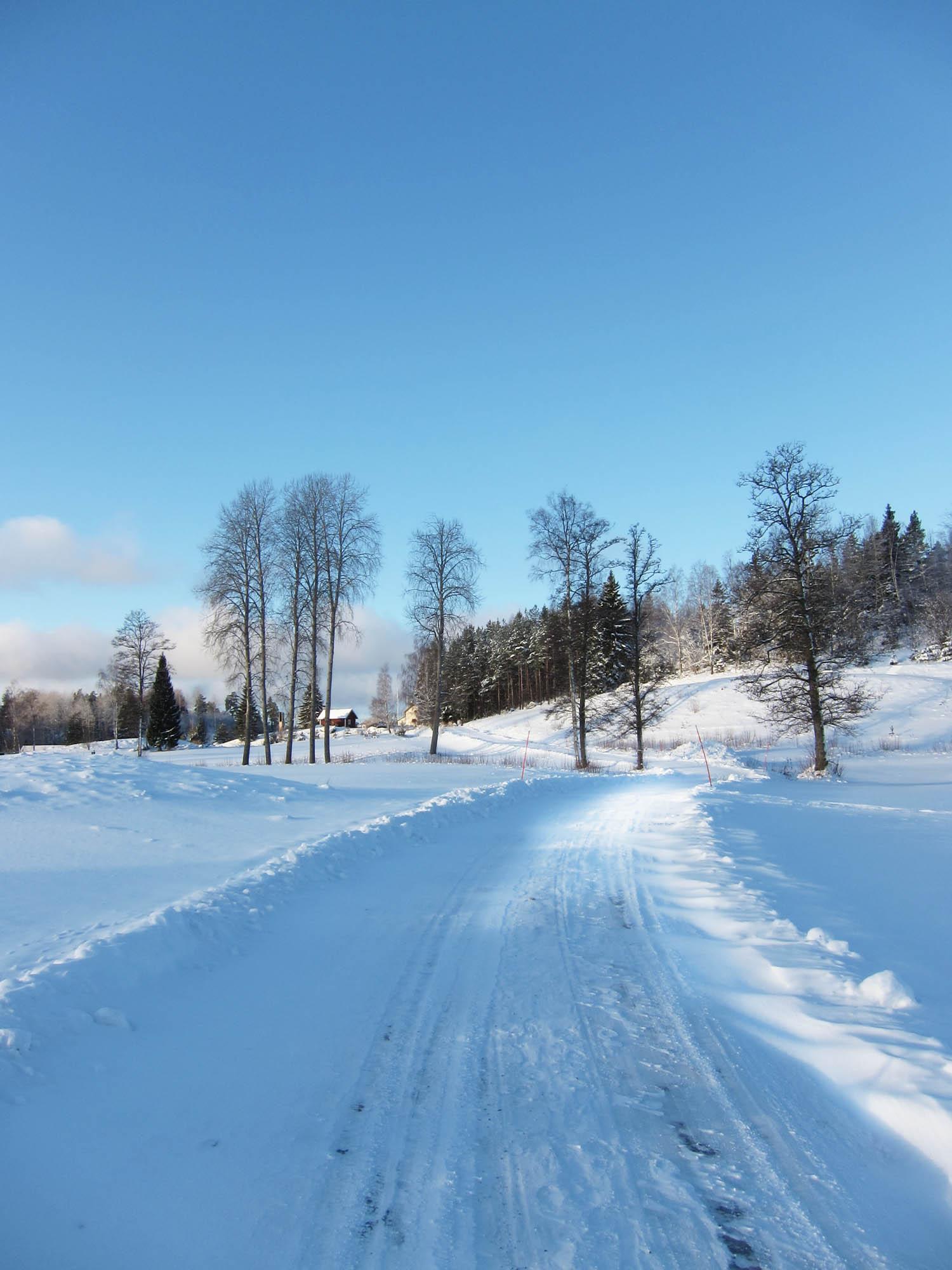 2013-02-08 promenad 03