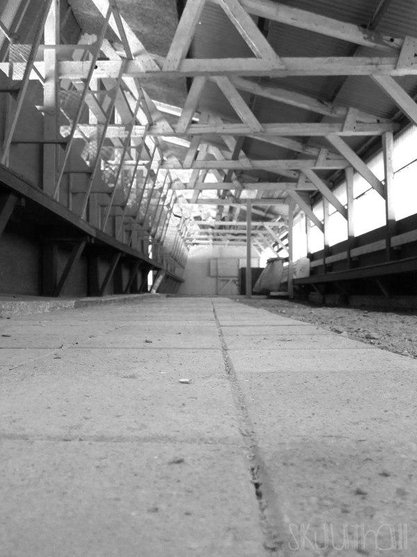 2013-02-18 Skjuthall