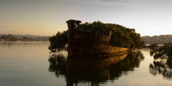 The remains of the SS Ayrfield in Homebush Bay, Australia
