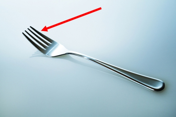 Tines - The prongs on a fork.