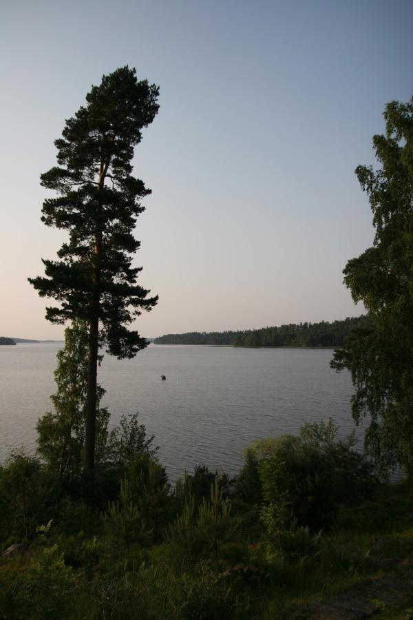 2013-07-04 Midsommar 09