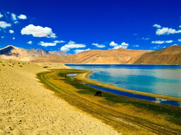 Pangong Tso Lake, a narrow saline lake in the Himalayas between Tibet and India